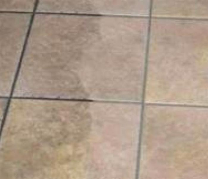 Ceramic Tile Cleaning Before