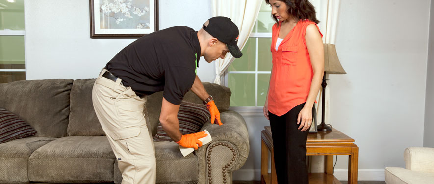 Jonesboro, AR carpet upholstery cleaning